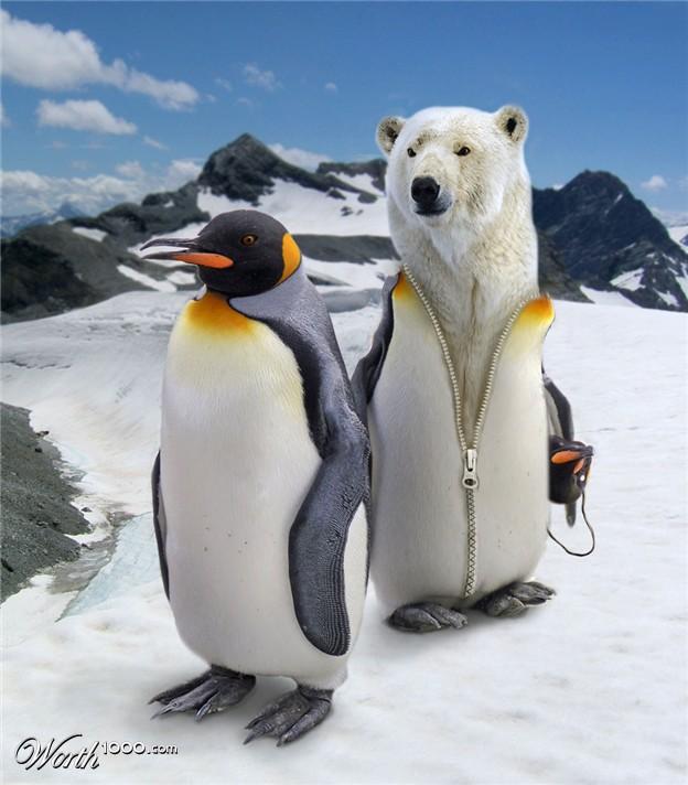 PolarBearInPenguinCostume